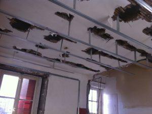 entreprise pose plafond suspendu lyon
